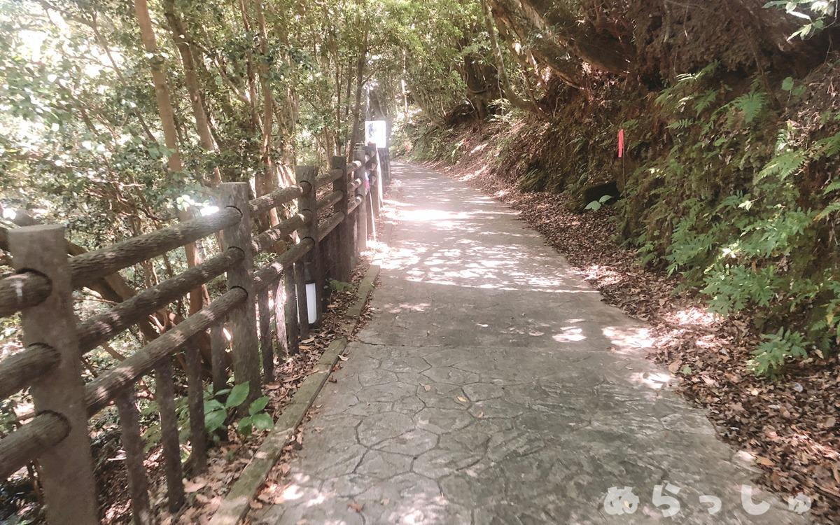 奥花瀬ニジマス釣場の山道