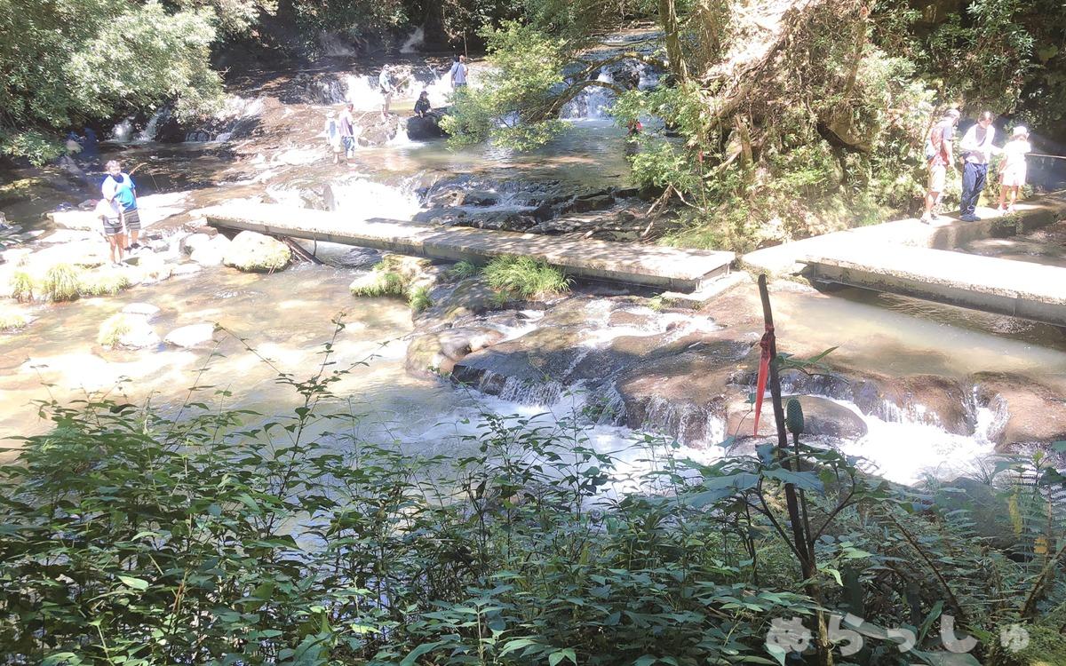 奥花瀬ニジマス釣場の渓流