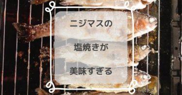 【楽しい】鹿児島・大隅半島の奥花瀬ニジマス釣場で渓流釣り|塩焼きが美味